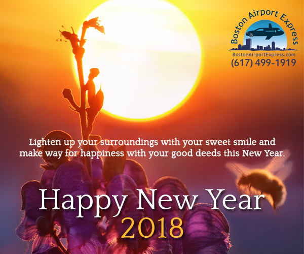 wish you a very happy new year 2018